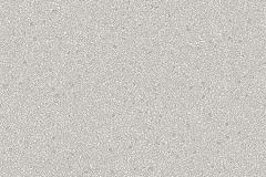 sr210202.jpg
