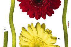 Természeti mintás,virágmintás,piros-bordó,sárga,zöld,anyagában öntapadós falmatrica Emberek-sztárok,gyerek,rajzolt,bézs-drapp,fehér,fekete,kék,lila,narancs-terrakotta,pink-rózsaszín,piros-bordó,sárga,szürke,türkiz,zöld,anyagában öntapadós tapéta Emberek-sztárok,gyerek,rajzolt,fehér,fekete,kék,narancs-terrakotta,pink-rózsaszín,piros-bordó,sárga,türkiz,zöld,barna,bézs-drapp,anyagában öntapadós tapéta Emberek-sztárok,gyerek,rajzolt,barna,fehér,fekete,kék,lila,narancs-terrakotta,pink-rózsaszín,sárga,türkiz, tapéta Emberek-sztárok,gyerek,rajzolt,fehér,lila,pink-rózsaszín,sárga,zöld,anyagában öntapadós tapéta Emberek-sztárok,gyerek,rajzolt,fehér,fekete,kék,piros-bordó,sárga,szürke,anyagában öntapadós tapéta Emberek-sztárok,gyerek,rajzolt,barna,bézs-drapp,piros-bordó,sárga,vajszínű,zöld,anyagában öntapadós tapéta Emberek-sztárok,gyerek,rajzolt,barna,bézs-drapp,fehér,fekete,piros-bordó,sárga,szürke,vajszínű,anyagában öntapadós tapéta Emberek-sztárok,gyerek,rajzolt,barna,fehér,fekete,kék,lila,narancs-terrakotta,pink-rózsaszín,piros-bordó,sárga,szürke,zöld,anyagában öntapadós tapéta Emberek-sztárok,gyerek,rajzolt,fehér,kék,sárga,szürke,anyagában öntapadós tapéta Emberek-sztárok,gyerek,rajzolt,barna,bézs-drapp,fehér,fekete,piros-bordó,sárga,szürke,anyagában öntapadós tapéta Emberek-sztárok,gyerek,rajzolt,barna,fehér,kék,lila,piros-bordó,sárga,szürke,türkiz,zöld,anyagában öntapadós tapéta Emberek-sztárok,gyerek,rajzolt,fehér,fekete,kék,lila,narancs-terrakotta,pink-rózsaszín,piros-bordó,sárga,szürke,türkiz,zöld,anyagában öntapadós tapéta Emberek-sztárok,feliratos-számos,gyerek,rajzolt,fehér,fekete,piros-bordó,sárga,anyagában öntapadós tapéta Gyerek,különleges motívumos,pöttyös,rajzolt,természeti mintás,kék,sárga,vlies bordűr Feliratos-számos,gyerek,különleges motívumos,retro,tájkép,fekete,kék,narancs-terrakotta,piros-bordó,sárga,anyagában öntapadós panel Gyerek,különleges motívumos,rajzolt,természeti mintás,virágmintás,kék,narancs-terrakotta,pink-rózsaszín,sárga,vlies bordűr Abs