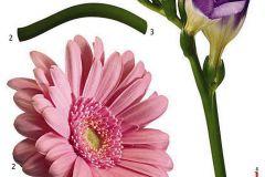 Természeti mintás,virágmintás,lila,pink-rózsaszín,zöld,anyagában öntapadós falmatrica Feliratos-számos,gyerek,rajzolt,bézs-drapp,fehér,fekete,kék,lila,narancs-terrakotta,pink-rózsaszín,piros-bordó,sárga,türkiz,zöld,anyagában öntapadós falmatrica Virágmintás,fehér,lila,pink-rózsaszín,zöld,anyagában öntapadós falmatrica Feliratos-számos,gyerek,rajzolt,fehér,fekete,kék,lila,narancs-terrakotta,pink-rózsaszín,piros-bordó,sárga,szürke,türkiz,zöld,anyagában öntapadós falmatrica Gyerek,rajzolt,természeti mintás,barna,bézs-drapp,fehér,fekete,kék,lila,narancs-terrakotta,pink-rózsaszín,piros-bordó,sárga,szürke,türkiz,vajszínű,zöld,anyagában öntapadós falmatrica Absztrakt,gyerek,kockás,fekete,lila,szürke,zöld,anyagában öntapadós falmatrica Természeti mintás,virágmintás,lila,pink-rózsaszín,sárga,zöld,anyagában öntapadós falmatrica Emberek-sztárok,gyerek,rajzolt,bézs-drapp,fehér,fekete,kék,lila,narancs-terrakotta,pink-rózsaszín,piros-bordó,sárga,szürke,türkiz,zöld,anyagában öntapadós tapéta Emberek-sztárok,gyerek,rajzolt,barna,fehér,fekete,kék,lila,narancs-terrakotta,pink-rózsaszín,sárga,türkiz, tapéta Emberek-sztárok,gyerek,rajzolt,fehér,lila,pink-rózsaszín,sárga,zöld,anyagában öntapadós tapéta Emberek-sztárok,gyerek,rajzolt,barna,fehér,fekete,kék,lila,narancs-terrakotta,pink-rózsaszín,piros-bordó,sárga,szürke,zöld,anyagában öntapadós tapéta Emberek-sztárok,gyerek,rajzolt,barna,fehér,kék,lila,piros-bordó,sárga,szürke,türkiz,zöld,anyagában öntapadós tapéta Emberek-sztárok,gyerek,rajzolt,fehér,fekete,kék,lila,narancs-terrakotta,pink-rózsaszín,piros-bordó,sárga,szürke,türkiz,zöld,anyagában öntapadós tapéta Emberek-sztárok,feliratos-számos,gyerek,rajzolt,fehér,fekete,lila,anyagában öntapadós tapéta Egyszínű,kőhatású-kőmintás,különleges felületű,metál-fényes,gyöngyház,lila,lemosható,illesztés mentes,vlies tapéta Egyszínű,különleges felületű,metál-fényes,gyöngyház,lila,lemosható,vlies tapéta Egyszínű,különleges felületű,metál-fényes,gyöngyház,lila,lemosható,illesztés mentes,vlies tapé