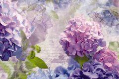 Feliratos-számos,fotórealisztikus,virágmintás,kék,lila,vajszín,zöld,gyengén mosható,papír poszter, fotótapéta