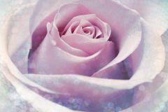 Fotórealisztikus,gyerek,gyöngyös,pöttyös,virágmintás,kék,lila,pink-rózsaszín,gyengén mosható,vlies poszter, fotótapéta