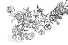 Rajzolt,retro,virágmintás,fehér,fekete,gyengén mosható,vlies poszter, fotótapéta