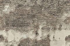 3d hatású,fotórealisztikus,kőhatású-kőmintás,különleges motívumos,retro,barna,bézs-drapp,szürke,gyengén mosható,vlies poszter, fotótapéta