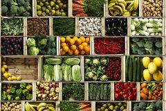 3d hatású,fotórealisztikus,konyha-fürdőszobai,különleges motívumos,retro,természeti mintás,barna,fehér,fekete,narancs-terrakotta,piros-bordó,sárga,vajszín,zöld,gyengén mosható,vlies poszter, fotótapéta