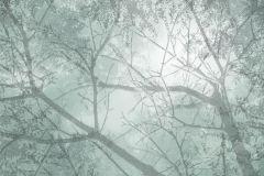 Fa hatású-fa mintás,gyerek,különleges motívumos,rajzolt,retro,természeti mintás,virágmintás,fehér,szürke,zöld,gyengén mosható,vlies poszter, fotótapéta