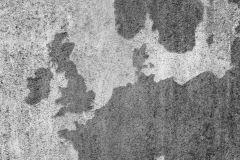 p270201-10_zoom-1.jpg