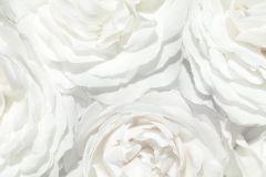 Fotórealisztikus,különleges motívumos,virágmintás,fehér,szürke,gyengén mosható,vlies poszter, fotótapéta