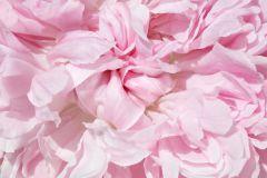 Fotórealisztikus,természeti mintás,virágmintás,bézs-drapp,pink-rózsaszín,gyengén mosható,vlies poszter, fotótapéta