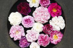 Konyha-fürdőszobai,különleges motívumos,virágmintás,fehér,pink-rózsaszín,piros-bordó,sárga,szürke,gyengén mosható,vlies poszter, fotótapéta