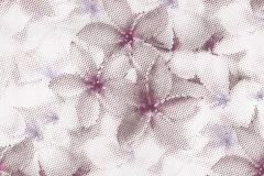Különleges motívumos,pöttyös,virágmintás,fehér,lila,súrolható,vlies tapéta állatok,geometriai mintás,pöttyös,barna,bézs-drapp,lila,pink-rózsaszín,sárga,szürke,lemosható,vlies panel állatok,geometriai mintás,pöttyös,barna,bézs-drapp,kék,pink-rózsaszín,sárga,lemosható,vlies panel állatok,geometriai mintás,pöttyös,barna,sárga,szürke,türkiz,lemosható,vlies panel állatok,geometriai mintás,pöttyös,bronz,kék,pink-rózsaszín,piros-bordó,szürke,türkiz,zöld,lemosható,vlies panel Geometriai mintás,pöttyös,bézs-drapp,lemosható,illesztés mentes,vlies tapéta Geometriai mintás,pöttyös,szürke,lemosható,illesztés mentes,vlies tapéta Geometriai mintás,pöttyös,arany,barna,szürke,zöld,lemosható,vlies tapéta Geometriai mintás,pöttyös,arany,lila,piros-bordó,lemosható,vlies tapéta Geometriai mintás,pöttyös,barna,kék,piros-bordó,zöld,lemosható,vlies tapéta Geometriai mintás,pöttyös,barna,bézs-drapp,lemosható,vlies tapéta Geometriai mintás,pöttyös,barna,bézs-drapp,lemosható,vlies tapéta Geometriai mintás,pöttyös,barna,szürke,lemosható,vlies tapéta Geometriai mintás,pöttyös,bézs-drapp,lemosható,vlies tapéta Geometriai mintás,pöttyös,bézs-drapp,ezüst,szürke,lemosható,vlies tapéta Geometriai mintás,pöttyös,arany,bézs-drapp,lemosható,vlies tapéta Gyerek,pöttyös,bézs-drapp,fehér,gyengén mosható,papír tapéta Gyerek,pöttyös,fehér,pink-rózsaszín,gyengén mosható,papír tapéta Gyerek,pöttyös,fehér,pink-rózsaszín,gyengén mosható,papír tapéta Gyerek,pöttyös,fehér,piros-bordó,gyengén mosható,papír tapéta Csíkos,pöttyös,lila,szürke,lemosható,illesztés mentes,vlies tapéta Csíkos,pöttyös,szürke,lemosható,illesztés mentes,vlies tapéta Csíkos,pöttyös,fehér,sárga,zöld,lemosható,illesztés mentes,vlies tapéta Csíkos,pöttyös,barna,fehér,szürke,lemosható,illesztés mentes,vlies tapéta Csíkos,pöttyös,lila,szürke,lemosható,illesztés mentes,vlies tapéta Csíkos,pöttyös,szürke,lemosható,illesztés mentes,vlies tapéta Csíkos,pöttyös,fehér,sárga,zöld,lemosható,illesztés mentes,vlies tapéta Csíkos,pöttyös,fehér,szürke,lemosh